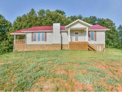 Elizabethton Single Family Home For Sale: 1790 Mary Patton Hwy.