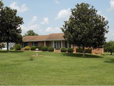 Rogersville Single Family Home For Sale: 122 Corbin Heights Dr.