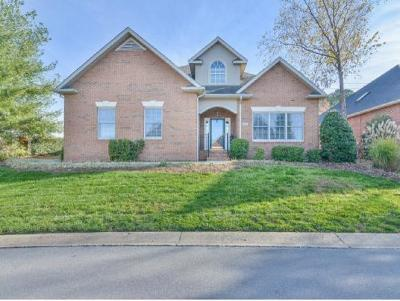 Johnson City Single Family Home For Sale: 1820 Waters Edge