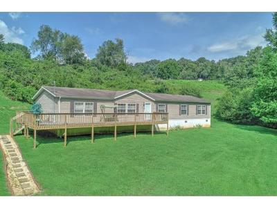 Single Family Home For Sale: 360 Surgoinsville Creek Road