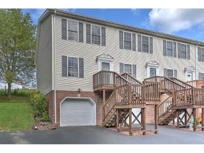 Bristol TN Condo/Townhouse For Sale: $94,900