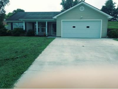 Piney Flats Single Family Home For Sale: 388 Kings Rd