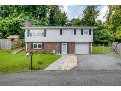 Bristol Single Family Home For Sale: 512 Montrose Drive