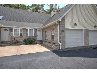 Kingsport Condo/Townhouse For Sale: 3719 Apple Grove Circle