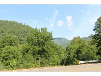 Butler Residential Lots & Land For Sale: 8792 Roan Creek