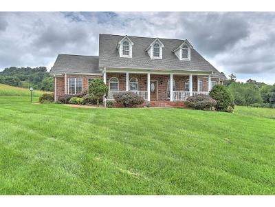 Damascus, Bristol, Bristol Va City Single Family Home For Sale: 16996 Old Jonesboro Rd