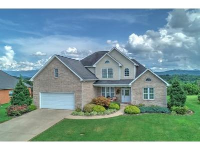 Greeneville Single Family Home For Sale: 110 Golf Villa Drive
