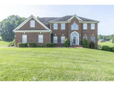 Bristol VA Single Family Home For Sale: $379,000