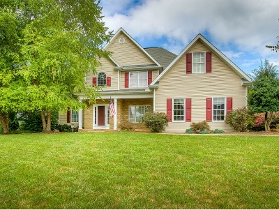 Blountville Single Family Home For Sale: 300 Southridge Drive