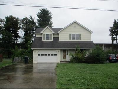 Bristol VA Single Family Home For Sale: $119,000