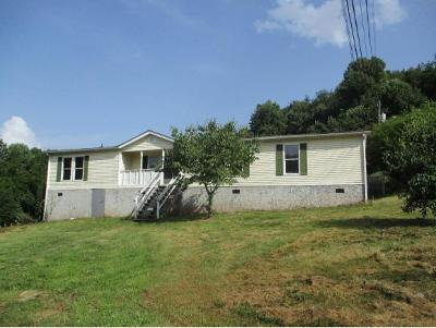 Damascus VA Single Family Home For Sale: $94,000