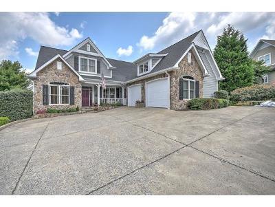 Bristol VA Single Family Home For Sale: $434,900