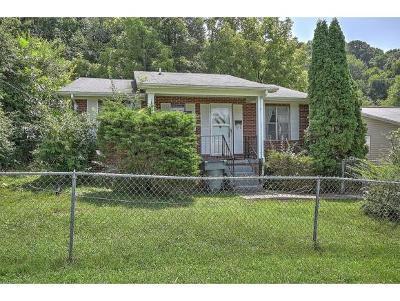 Bristol TN Single Family Home For Sale: $59,900
