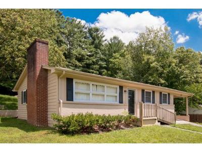 Bristol TN Single Family Home For Sale: $94,900
