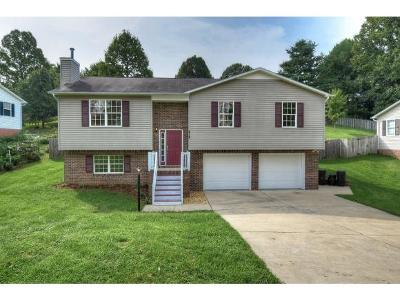 Bluff City TN Single Family Home For Sale: $165,000