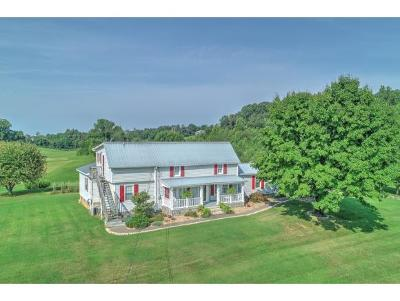 Greeneville Single Family Home For Sale: 130 Poor Farm Road