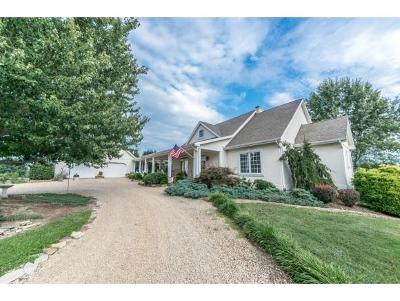 Jonesborough Single Family Home For Sale: 124 Jim Town Rd.