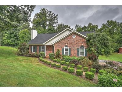 Kingsport TN Single Family Home For Sale: $195,000