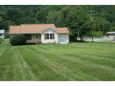 Roan Mountain Single Family Home For Sale: 614 Old Highway 143