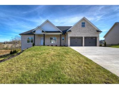 Gray Single Family Home For Sale: 1348 Savin Falls
