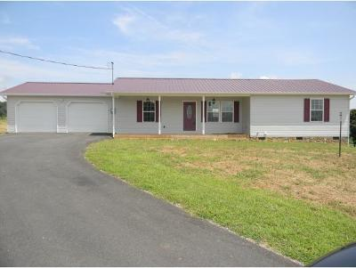 Greeneville Single Family Home For Sale: 110 N Massengill Rd.