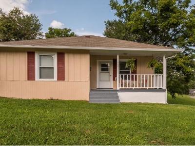 Bristol Single Family Home For Sale: 329 Vance Street