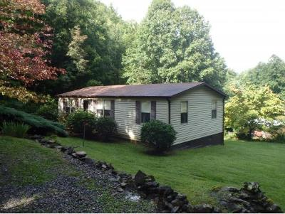 Roan Mountain Single Family Home For Sale: 149 Doty Road