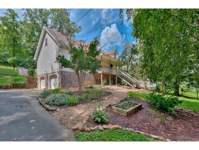 Gray Single Family Home For Sale: 511 Frog Level Road