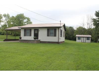 Mosheim Single Family Home For Sale: 605 Main Street