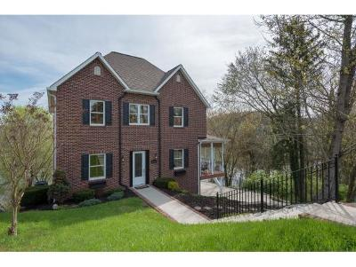 Kingsport Single Family Home For Sale: 3661 Crest Road