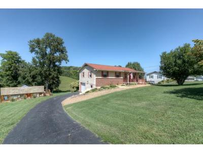 Mosheim Single Family Home For Sale: 410 Fellers Cove Road