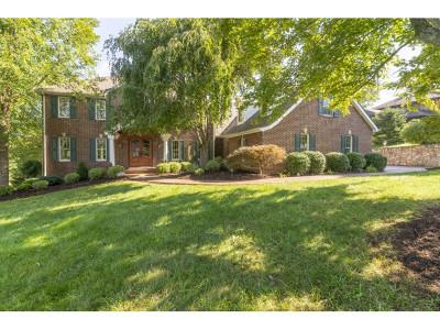 Abingdon Single Family Home For Sale: 371 Augusta Drive