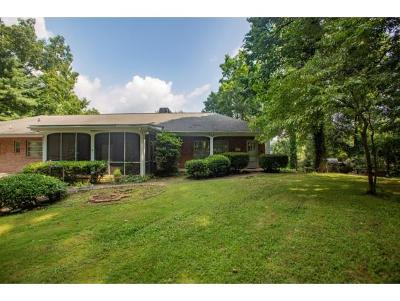 Johnson City Single Family Home For Sale: 300 Castlewood Ct