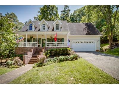 Kingsport Single Family Home For Sale: 204 Boone Ridge Dr