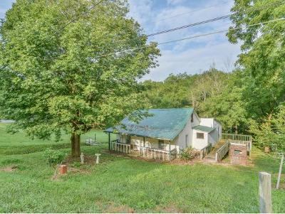 Bluff City Single Family Home For Sale: 1576 Mount Holston
