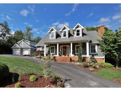 Damascus, Bristol, Bristol Va City Single Family Home For Sale: 15270 Knob Hill Drive
