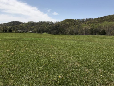 Greene County Residential Lots & Land For Sale: Roaming Dr.