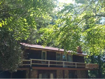 Roan Mountain Single Family Home For Sale: 310 Miller Hollow Road