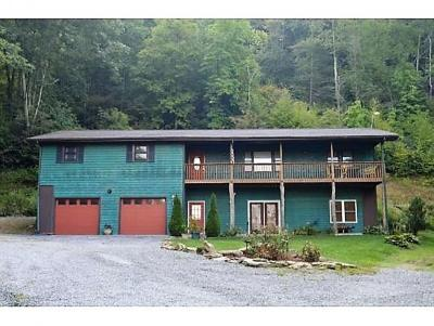 Roan Mountain Single Family Home For Sale: 342 Beaver Creek Road