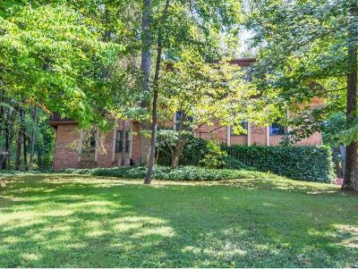 Greeneville Single Family Home For Sale: 1241 Tanglewood Drive