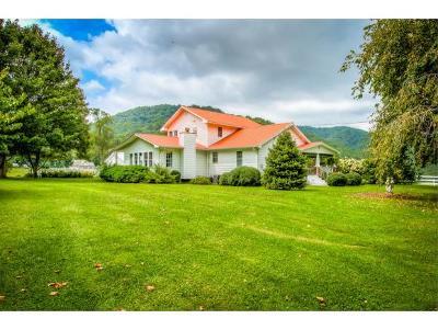 Single Family Home For Sale: 330 Heaton Ridge Rd