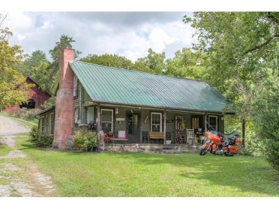 Rogersville Single Family Home For Sale: 535 Manis Road