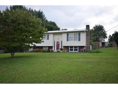 Piney Flats Single Family Home For Sale: 1387 Weaver Branch Rd