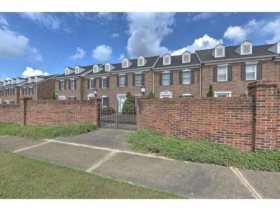 Kingsport Condo/Townhouse For Sale: 1018 Konnarock Road #1018