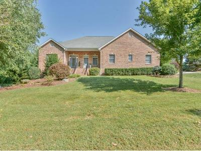 Piney Flats Single Family Home For Sale: 201 Jamestown Drive
