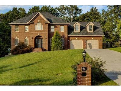 Kingsport Single Family Home For Sale: 320 Abbey Rd