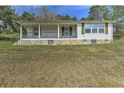Greeneville Single Family Home For Sale: 202 Valley View Dr