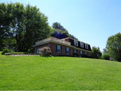 Bristol Single Family Home For Sale: 400 Springlake Road