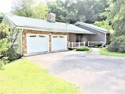 Single Family Home For Sale: 539 Terrace Lake Dr