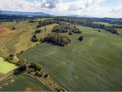 Greene County Residential Lots & Land For Sale: 00 TBD Poplar Springs Rd